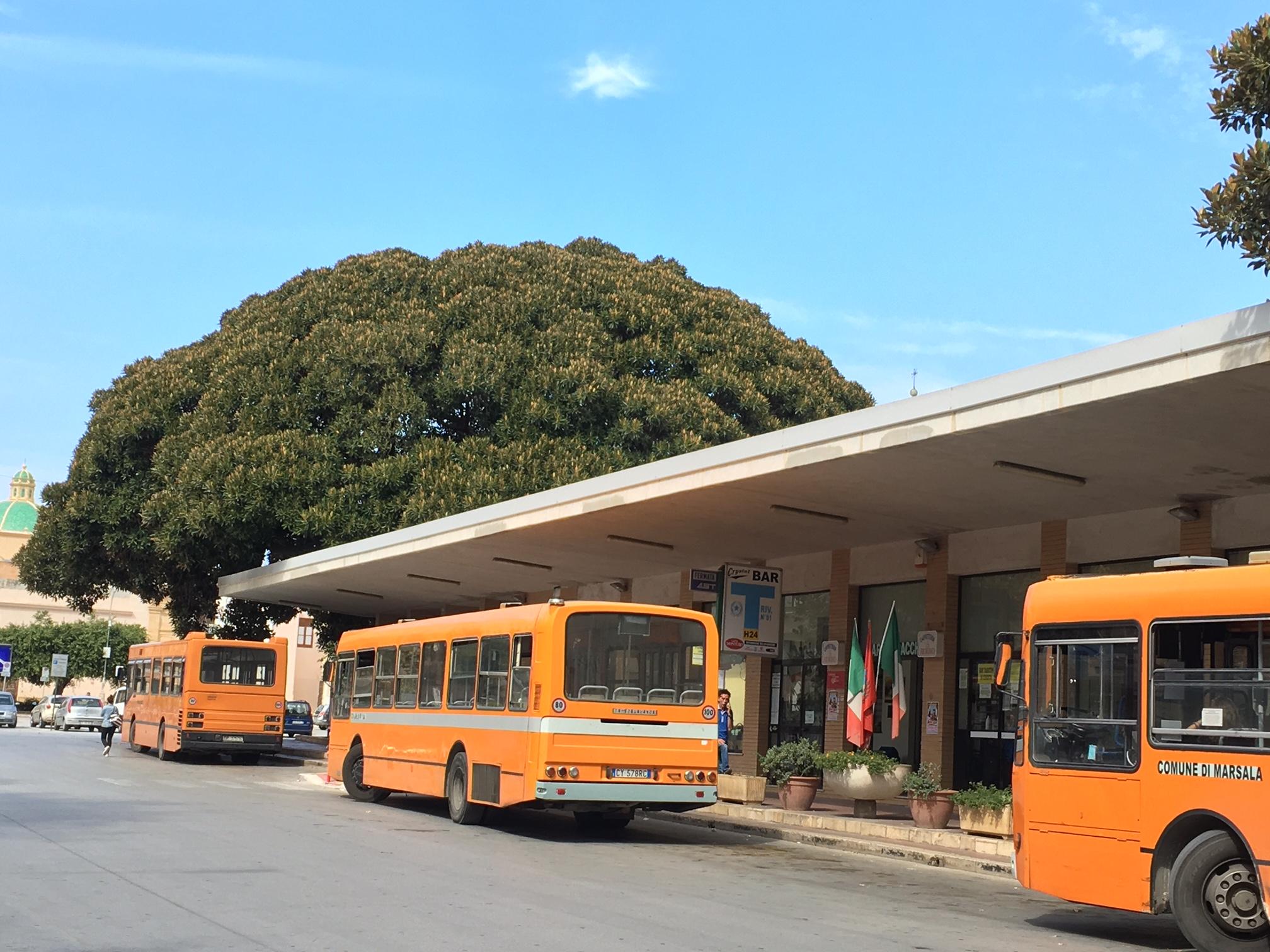 autostazione bus