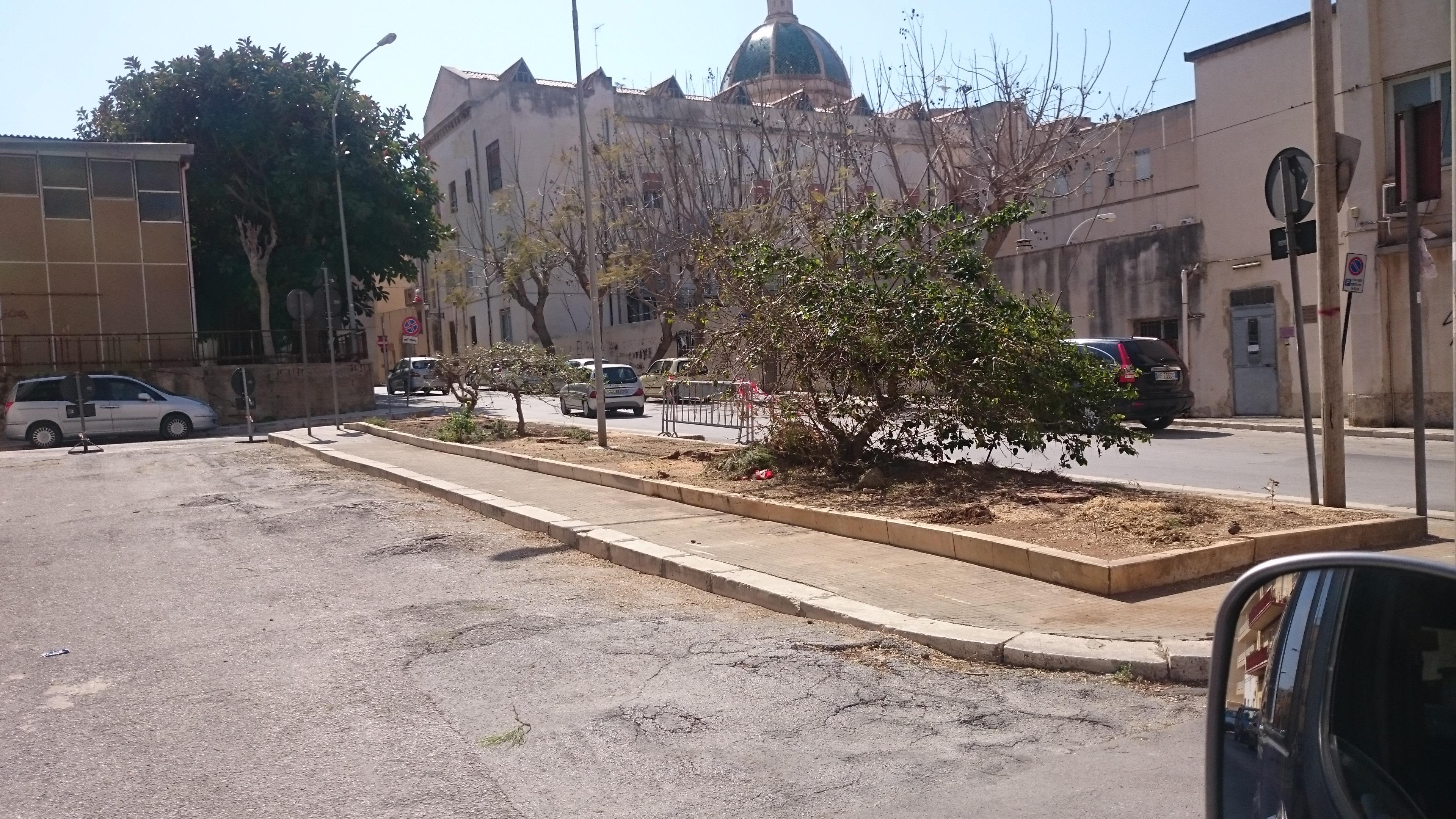 pini zona Porticella Marsala